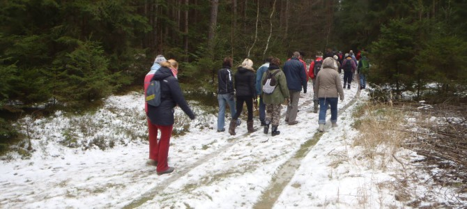 Vydejte se na novoroční pochod zimní přírodou v novém roce 2019