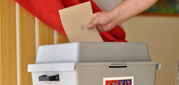Jak dopadly volby do Evropského parlamentu v Domašíně?